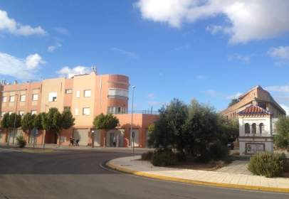 Olivar Viejo 72 VPO
