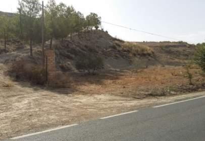 Terreno en Camino La Calzada