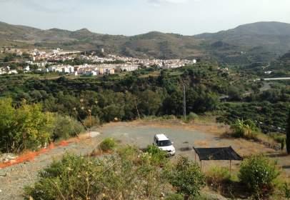 Terreny a Alameda Carretera de Bailén S/N