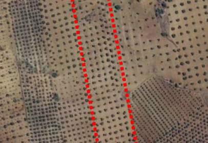 Terreno en Camino Paraje Vegas de La Encomienda, nº S/N
