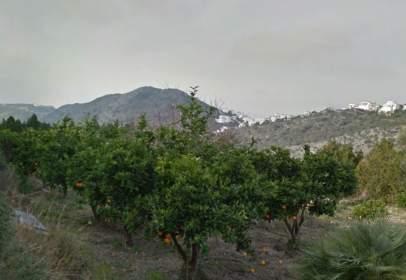 Terreno en Camino Sierra de Segaria, nº S/N
