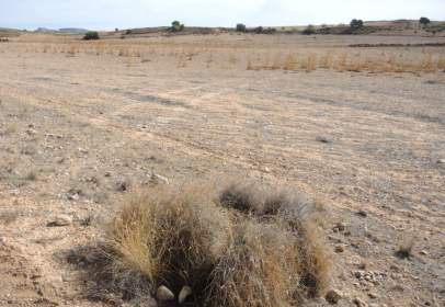 Rural Property in Termino Arriba