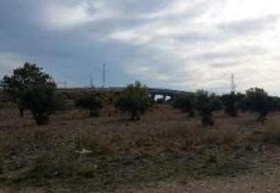 Finca rústica a  Campo Secano en La Muela, Partida Capellanía