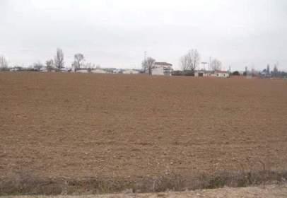 Land in  26 - P-10,  Sn