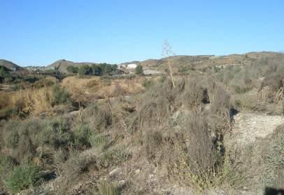 Rural Property in  Zarzalico Lorca